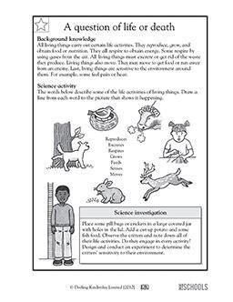 free printable 3rd grade science worksheets word lists