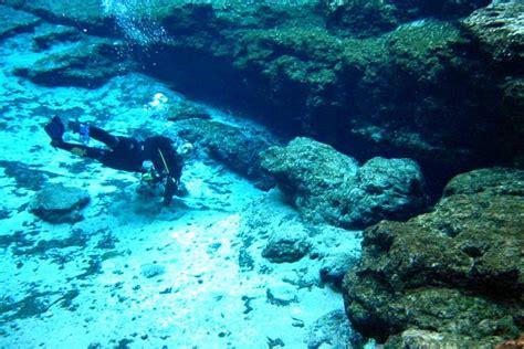 spectacular florida springs beginner scuba divers visit natural