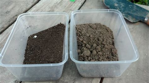 prepare garden soil planting soil vegetable garden september