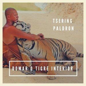 Domar o tigre interior