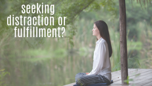 Read more about the article Seeking distraction or fulfillment?