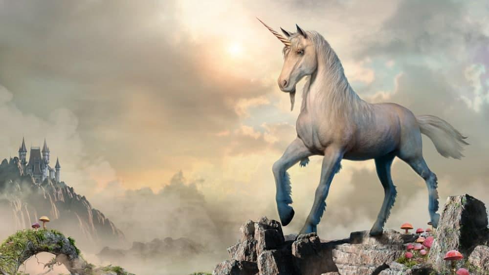 Straight-horn-unicorn-types-of-yoga