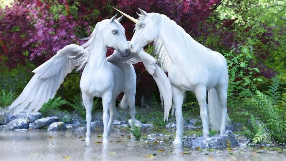 The-Pegasus-unicorn-facts