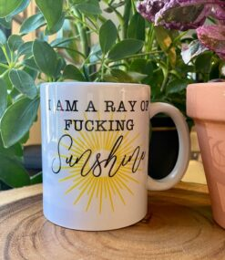 I Am A Ray Of Fucking Sunshine Mug Funny Gift