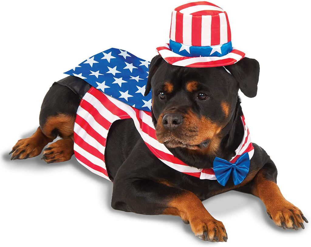 Rubies Uncle Sam Pet Costume Independence day gift for teachers