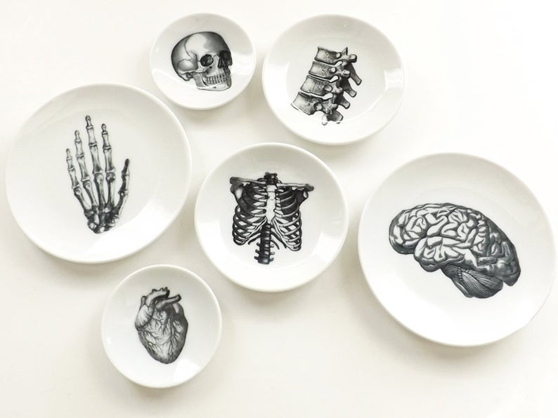 Anatomy Dishes - Best Halloween Gift For Mom
