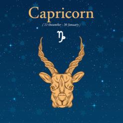 Capricorn Birthday Gift