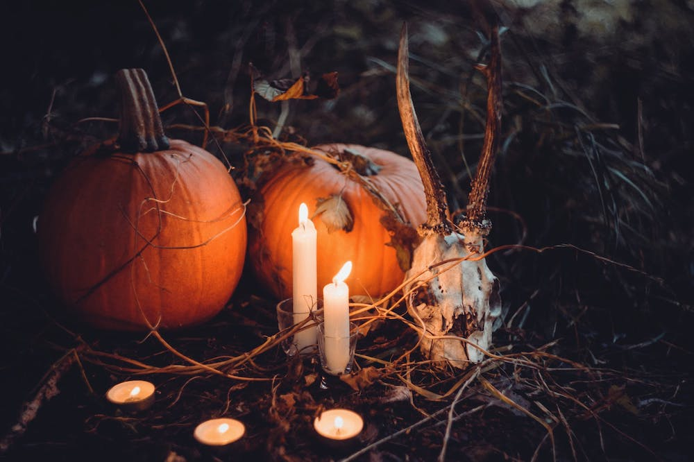 On the hunt for what is the night before Halloween called?