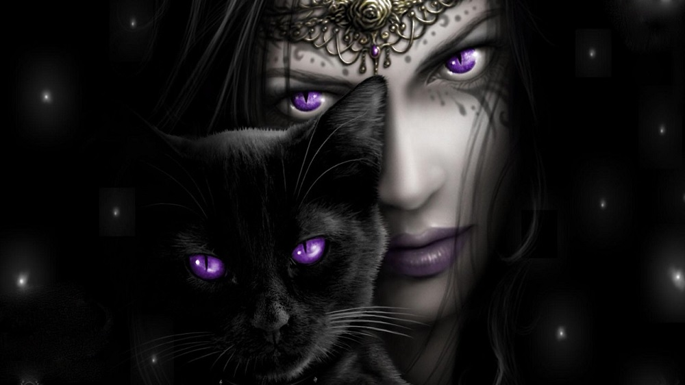 Black cats and witches