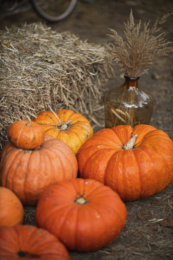 'A Thanksgiving Poem' by CJ Beaman- Thanksgiving poem for friends