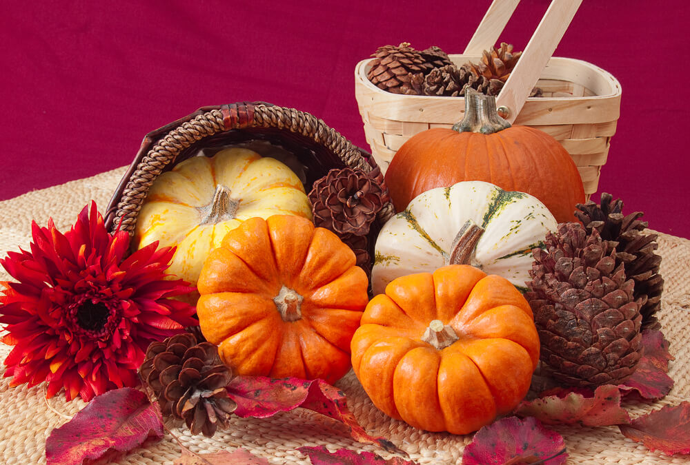 Cheap Thanksgiving Decorating Tips