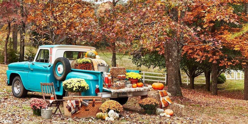 Thanksgiving Outdoor Decoration For Party