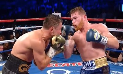 Canelo Alvarez defeated Gennady Golovkin in a rematch from last year.