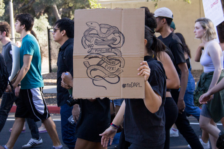 A cardboard poster with a snake