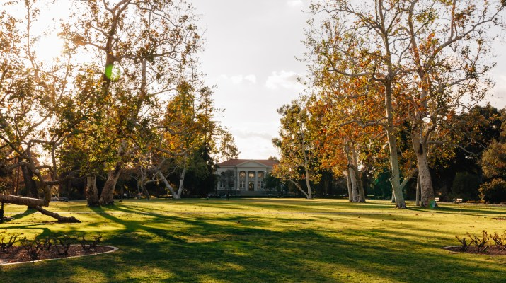 A photo of Marston Quad at sunset. A large grassy field with large trees.