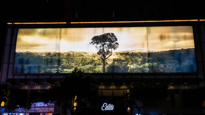 A billboard with a photo of a tree in a forest is on a buidling.