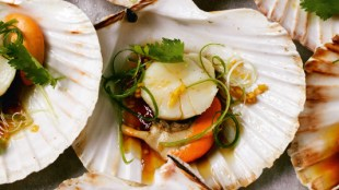 Steamed-scallops-in-the-shell-with-ginger