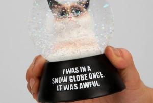 Snow Globe Cat Aweful