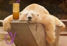 Κοιμηθείτε κι άλλο ζώα…. μας κλέβουνε από παντού!!!