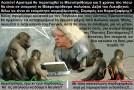 ΑΠΟΚΛΕΙΣΤΙΚΟ: Η Βενιζελίνη του ψευδοΠΑΣΟΚ, αναλύει όλες τις πτυχές του «Μεσοπρόθεσμου Πλαισίου Δημοσιονομικής Στρατηγικής»