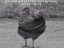 """Να μαρμαρώσουμε μια κότα… Και να τη κάνουμε μνημείο τρανό, για κάθε """"αντάρτη"""" εκατομμυριούχο βολευτή…"""