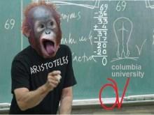 Κι΄ όμως κύριε Τ.Ν., καθηγητές κορυφαίων πανεπιστημίων, επιβεβαιώνουν την Αδωνιάδα θεωρία εξαφάνισης της… αυτοδίκαιης αργίας…