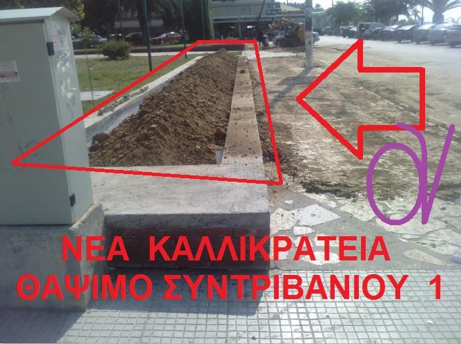 ΝΕΑ ΚΑΛΛΙΚΡΑΤΕΙΑ -ΘΑΨΙΜΟ ΣΥΝΤΡΙΒΑΝΙΟΥ 1