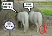 Το ΣΔΟΕ δεν αγγίζει λαθροεργολάβους και λαθροεπαγγελματίες, ενώ ληστεύει Έλληνες του… εξωτερικού!!!
