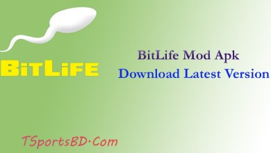 BitLife Mod Apk 2021