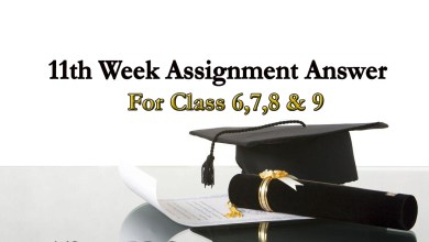 11th Week Assignment Answer Of Class 6,7,8,9 | Download Assignment Answer PDF