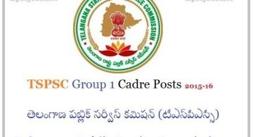 List of TSPSC Group1 Cadre Jobs