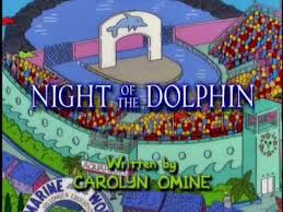 night of the dolphin