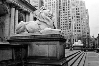NYC Public Library Lions