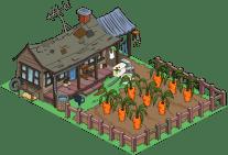 cletusfarm_Carrots_135