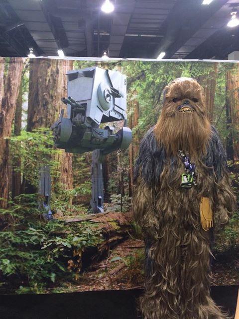 Wookiee Endor