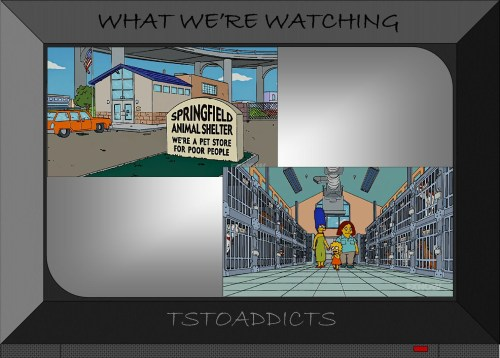 Springfield Animal Shelter Simpsons 2