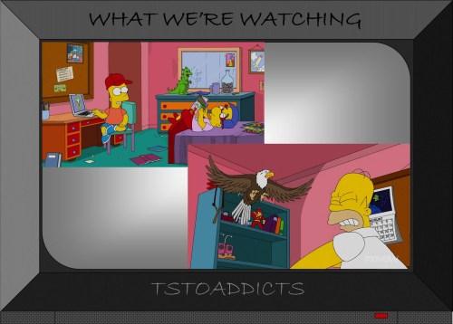 Radioactive Man Comics & Action Figure Simpsons