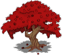 japanesemapletree