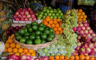 秋の味覚 果物