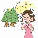 花粉症の時期カレンダー|スギだけじゃない!植物の種類によって発症タイミングが違う
