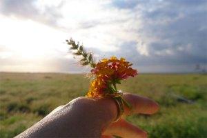 お花が好きな女の子にspring(春)の指輪でお姫様気分に