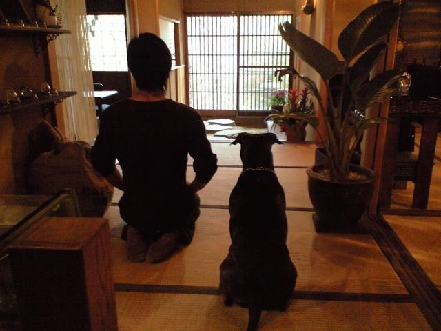 tsukikoya-CA3A0570001.JPG