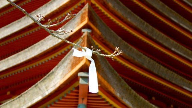 談山神社の初詣