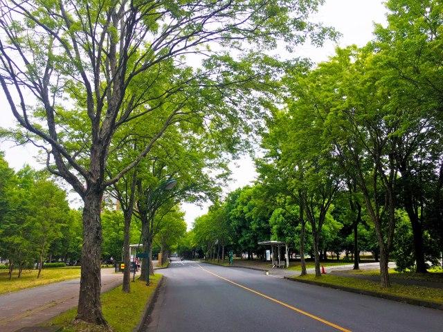 筑波大学第三エリア付近