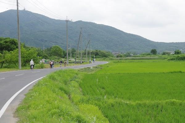 田園風景を楽しみながらのんびりサイクリング