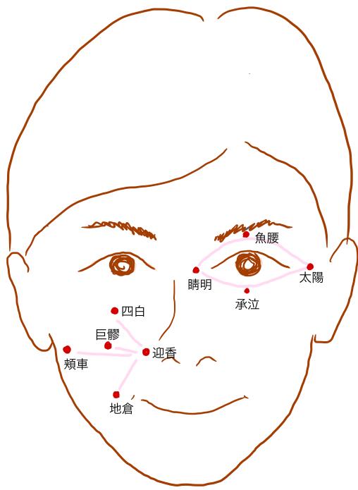 顔のツボの位置と刺激を与えるライン