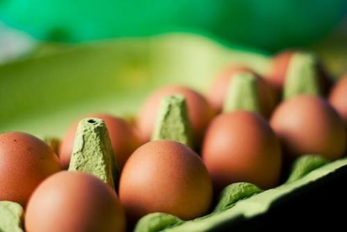 ケースに並んだ卵