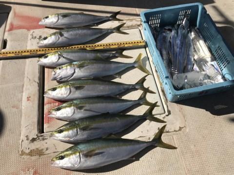 ●小潮 太刀魚狙い @ 明石市 | 兵庫県 | 日本