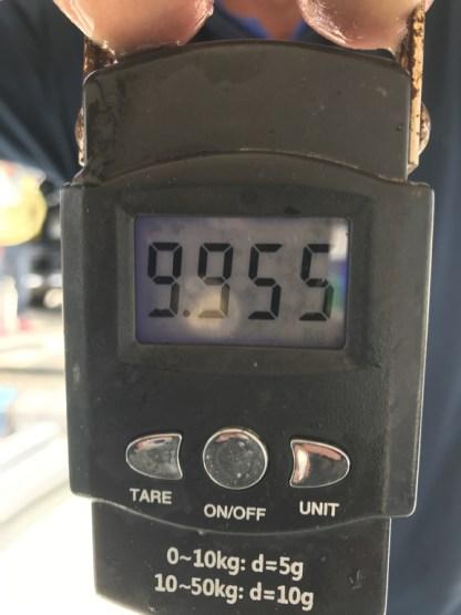 9.955kg