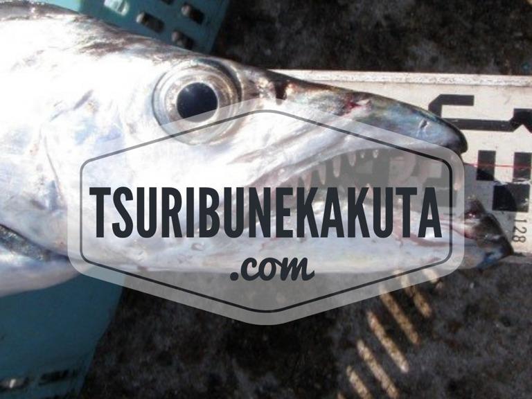 タチウオテンヤ・天秤釣りで10月24日ご予約ありがとうございます